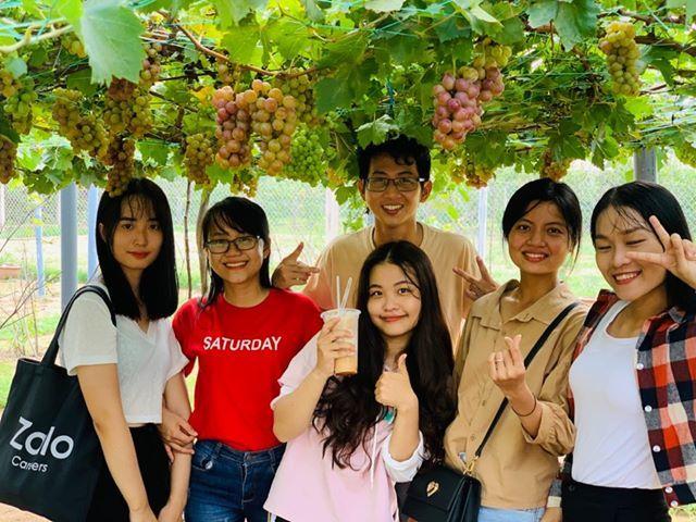 Vườn nho siêu trái ở miền Tây mở cửa miễn phí, giới trẻ thích thú đến check-in