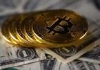 Chủ tịch FED Boston: 'Cơn sốt Bitcoin sẽ không kéo dài lâu'