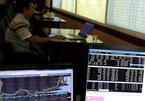 Public investment to foster VN's growth, heat up local stock market