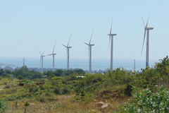 How should wind power be developed in Vietnam?