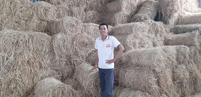 Gom thứ nông dân thường vứt đầy đồng, thanh niên thu về tiền triệu mỗi ngày
