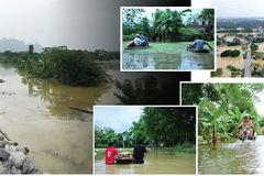 Extreme natural calamities cause big concerns for Vietnam