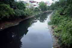 Many rivers in northern provinces still polluted: Environment administration