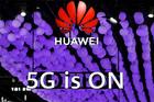 Huawei dẫn đầu thị trường thiết bị viễn thông toàn cầu nửa đầu năm 2020