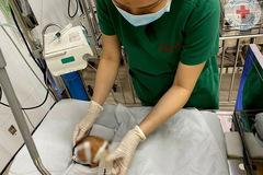 Trẻ sơ sinh bị bỏ rơi tím tái, người có nhiều vết tiêm