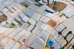 Should Vietnam pursue hi-tech or ecological agriculture?