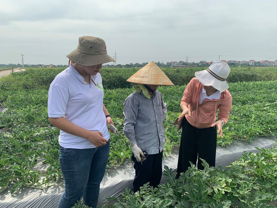 Chương trình Hạnh phúc Quảng Trị giúp phụ nữ Mò Ó vươn lên thoát nghèo