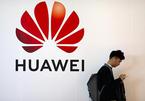 """Thêm một """"cánh cửa"""" dần khép lại với Huawei?"""
