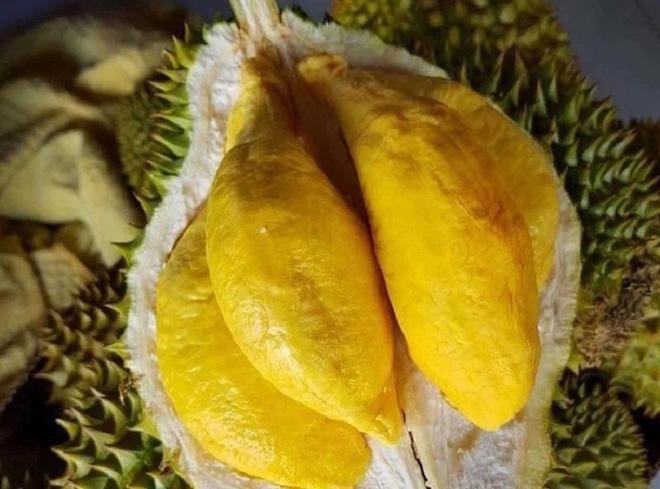 Tất tần tật thông tin về loại sầu riêng ngon nhất thế giới bán tại Việt Nam