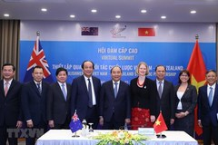Analysts upbeat about Vietnam - NZ strategic partnership