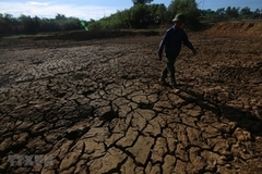 Heatwave baking Vietnam's north, central regions