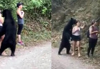 Bị gấu đen 'sàm sỡ', nữ du khách rút điện thoại ''tự sướng'