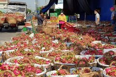 EC allows Vietnamese exporters to extend deadline of REX applications