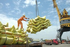 Vietnam emerges as the world's No2 rice exporter