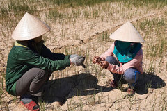 Vietnamese Government plan aims to improve adaptation to climate change
