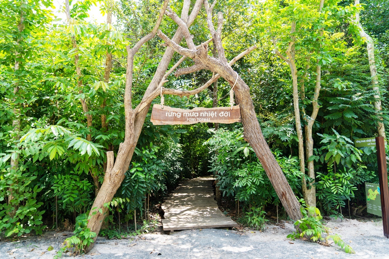 Trải nghiệm ngâm khoáng, trekking rừng nhiệt đới ở Minera Hot Springs Binh Chau