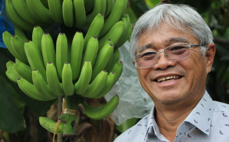 vietnam export,covid-19 impacts,vietnam fruit