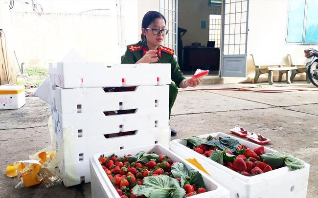 Nông sản Trung Quốc đội lốt đặc sản Đà Lạt: Gian thương tiếp tay