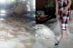 Rùng mình cách chế biến thạch dừa siêu bẩn