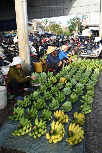 Quang Binh,vietnam travel