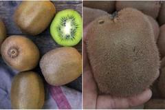 Kiwi Trung Quốc ngập tràn: 'Thay nhãn mác là đắt hàng'