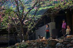 Phân định vùng đồng bào dân tộc thiểu số và miền núi giúp thúc đẩy xóa đói giảm nghèo
