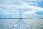 Electricity of Vietnam suggests not to extend deadline for wind farm FiT