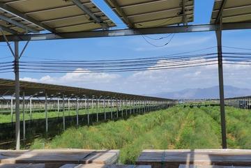 Thủ tướng yêu cầu Bộ Công Thương giải quyết vướng mắc điện mặt trời