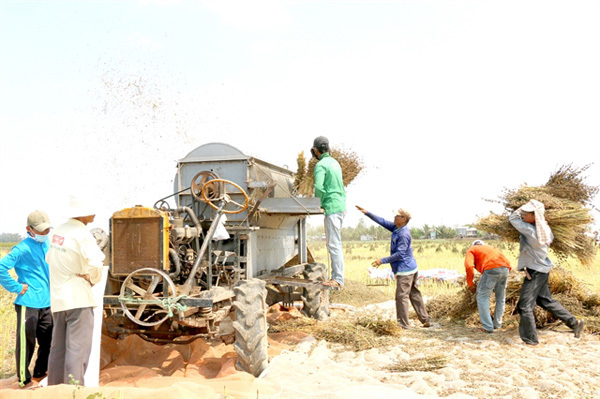 Niche inventions lessen load on farmers