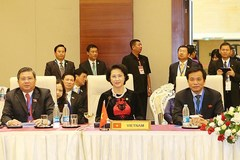 Vietnam actively contributes to building AIPA