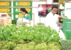 Vietnam's vegetables, fruits ready to enter choosy markets