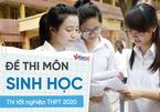 Đề thi môn Sinh Học thi Tốt nghiệp THPT 2020 đợt 2 chính thức