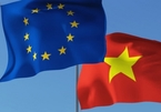 Vietnam receives positive view in global exports as EVFTA takes effect: report