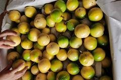 Chanh leo ngọt như mật, giá đắt gấp 3, góp tiền mua chung cả tạ