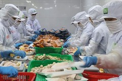 VN firms export products to Japan via retail channel