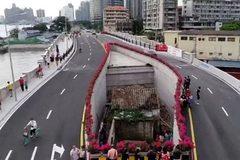 Ngôi nhà kỳ quặc nằm án ngữ giữa cầu cao tốc