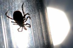 Bác sĩ cảnh báo loại virus chết người tái xuất ở Trung Quốc