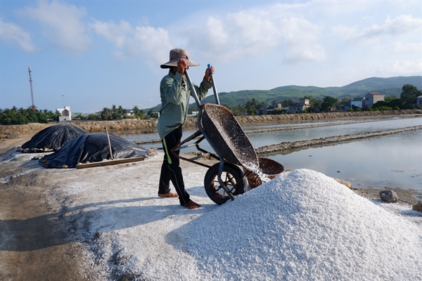 Value harvested from superior salt
