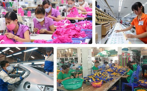 Reform urgently needed for Vietnam to make use of EVFTA