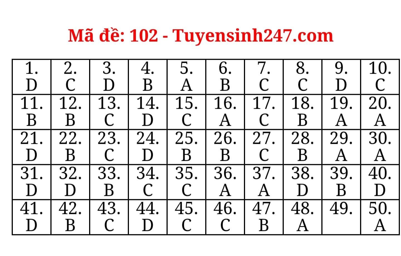 Đáp án tham khảo môn Toán thi tốt nghiệp THPT 2020 (mã đề 102)