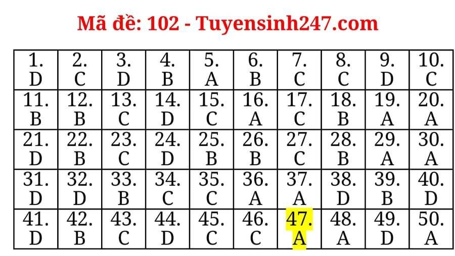 Đáp án tham khảo mã đề số 102 môn Toán thi tốt nghiệp THPT 2020