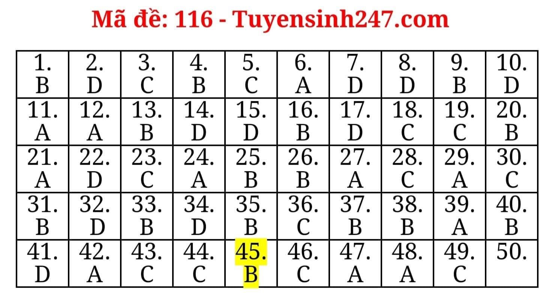 Đáp án tham khảo môn Toán thi tốt nghiệp THPT 2020, mã đề 116