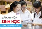 Đáp án môn Sinh học thi tốt nghiệp THPT 2020 (tham khảo)