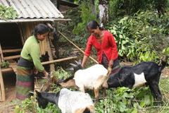 A Dơi huy động các nguồn lực đẩy mạnh giảm nghèo bền vững