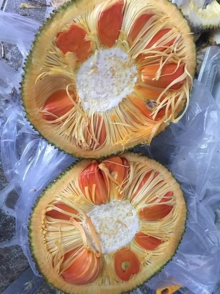 Lạ miệng mít ruột đỏ múi to dày, thơm ngọt giá 120.000 đồng/kg vẫn hút khách