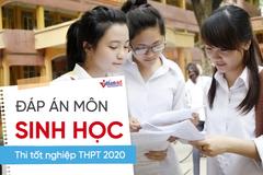 Đáp án tham khảo môn Sinh học thi tốt nghiệp THPT 2020, mã đề số 210
