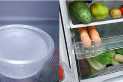 Đặt thứ này vào tủ lạnh, điều lạ xảy ra với rau củ quả và hóa đơn điện