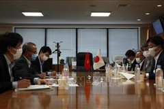 Japan pledges support, protection for Vietnamese interns