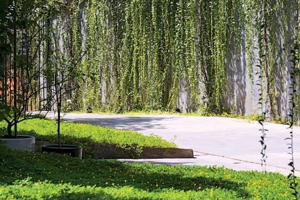 Làm ngôi nhà vườn sinh thái tuyệt đẹp ở Nghệ An dành cho vợ, con