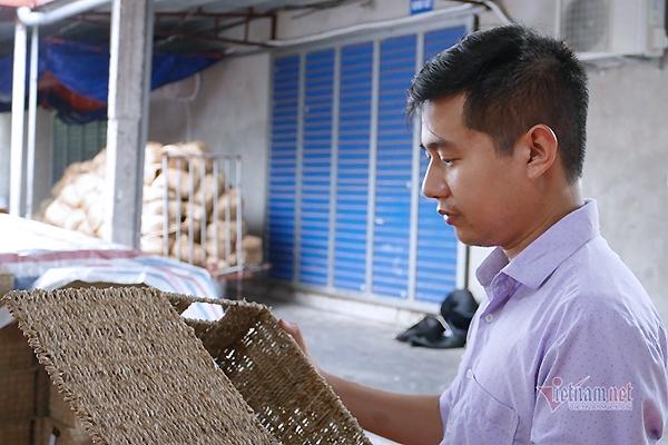 Nông dân 8X ở Ninh Bình thu 20 tỷ đồng/năm từ loại rau cho lợn ăn
